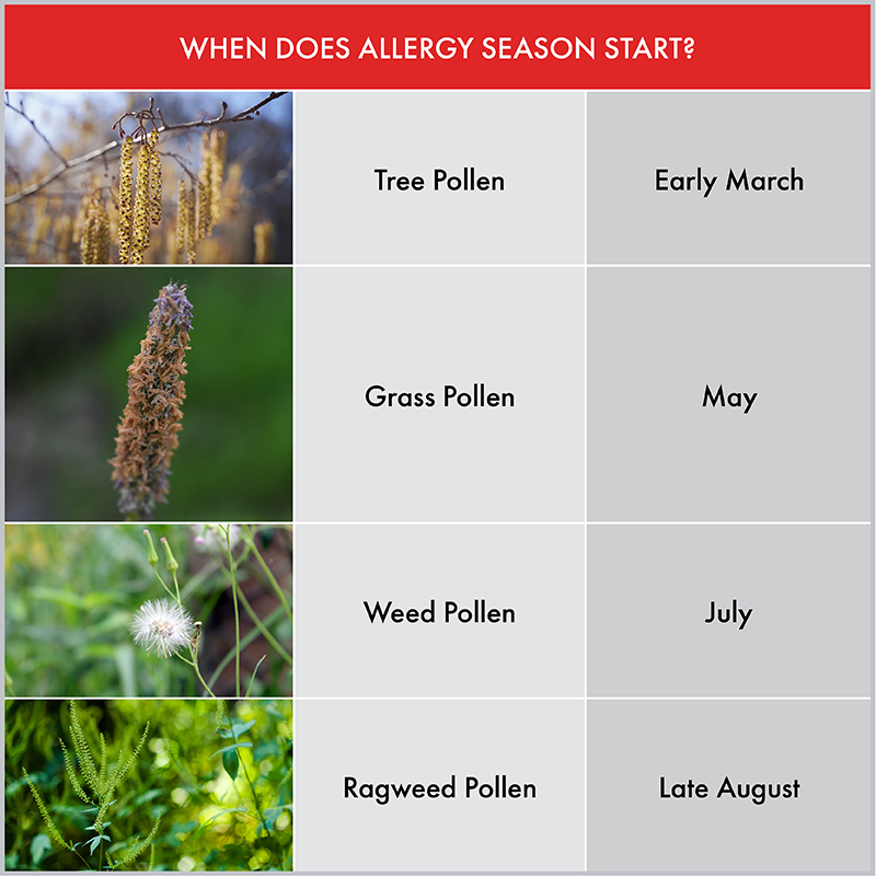 Getting a Grasp on Summer Allergies | ADVENT Knows